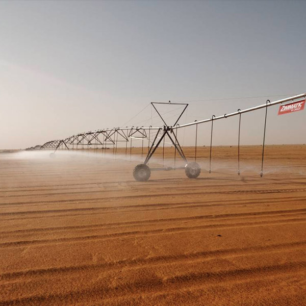 Irrigation Systems Put to Endurance Test in Sudan
